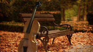 Violin in park