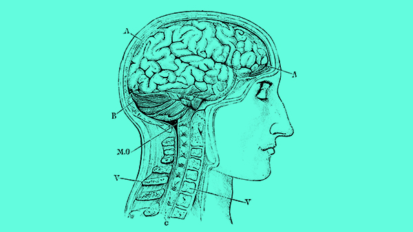 """How Neuroscience Can Help You Sing """"High, Loud, Healthy, and Forever"""""""