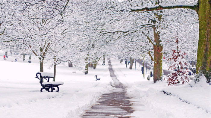 PLAYLIST   WFMT Selects Classical Music to Help You Brave the Winter