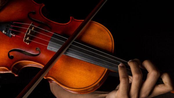 Musicians Protest in Harmony: Violin Vigils for Elijah McClain